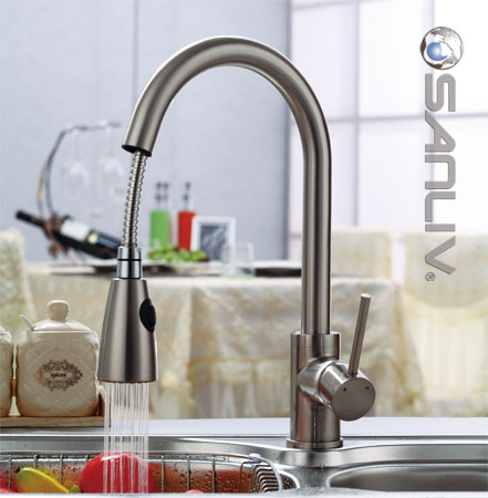 Sanliv Pullout Spray Kitchen Sink Faucet 28108